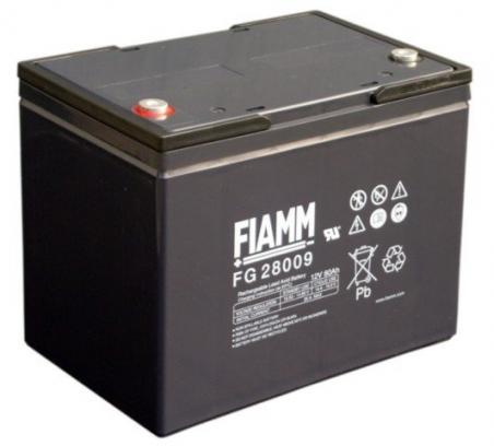 Аккумуляторные батареи FIAMM FG24204 - 17411