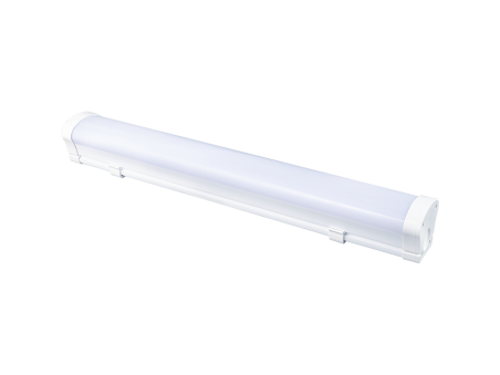 Diora LPO/LSP 19/2100 Mini-6 opal 4K - 17623